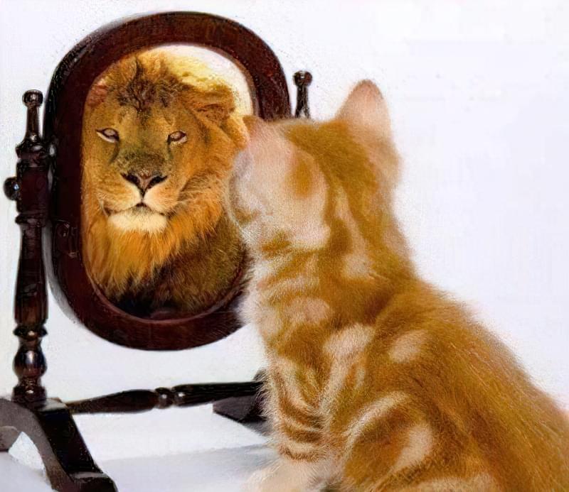 підвищення самооцінки