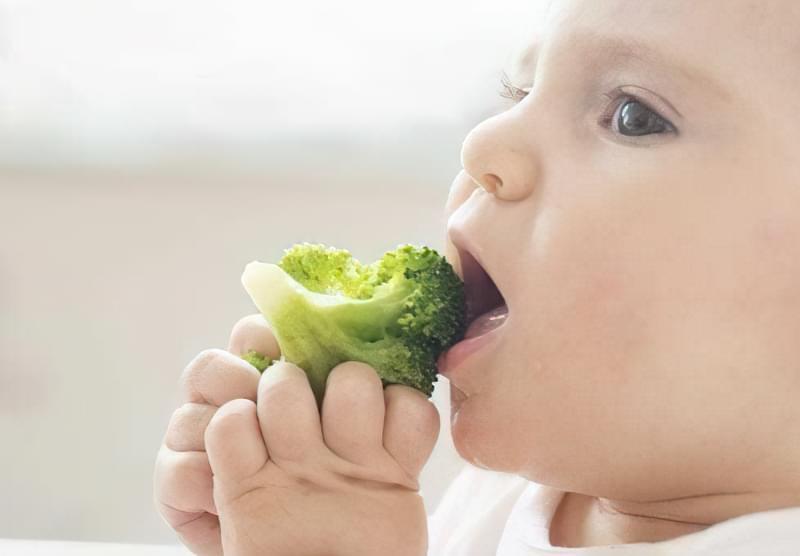 блюда гіпоалергенна дієта для дітей