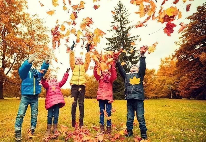 Осінні канікули: як краще провести час? 1