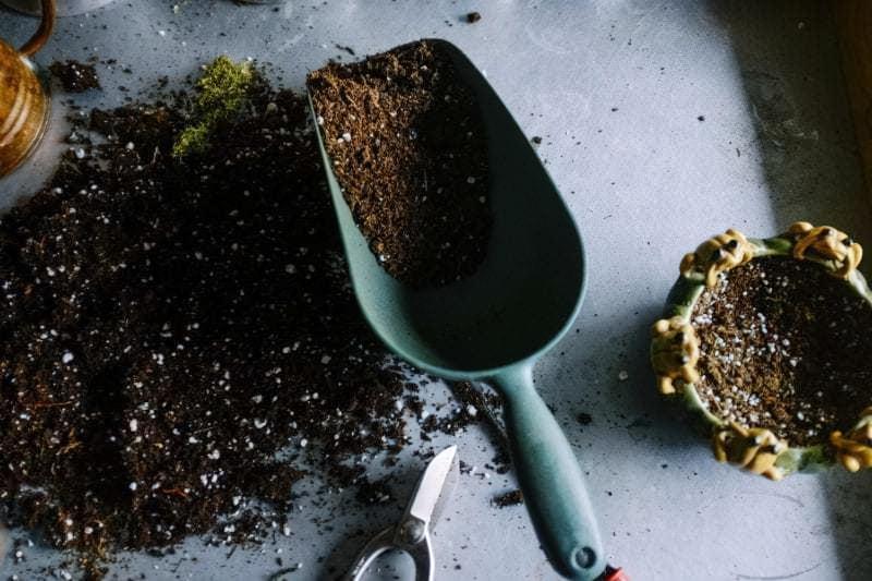Грунт для рослин