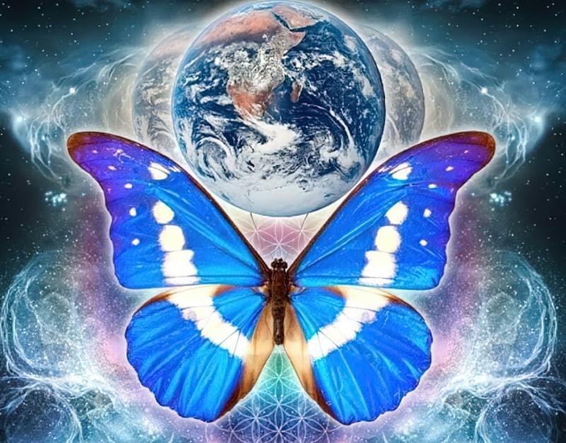 Що таке «ефект метелика»? 1