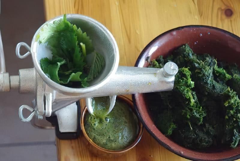 Приготування соку зі свіжої трави