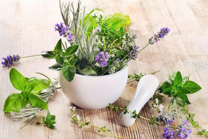 Лікарські трави для ополіскування