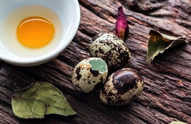 Для чоловіків і жінок, для дітей — користь перепелиних яєць